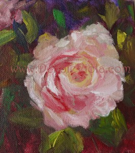 DAY 6, ROSE 6 X 6 OIL ON GALLERY WRAP CANVAS